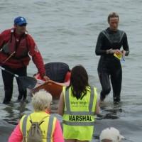 wild west solent swim 2014 (2)